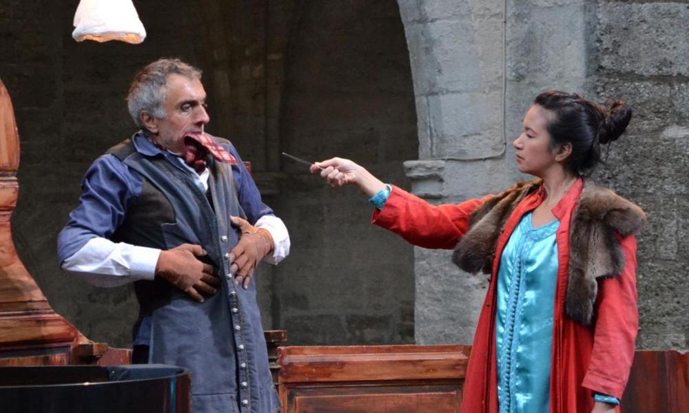 Òpera Càmera d'après Mozart