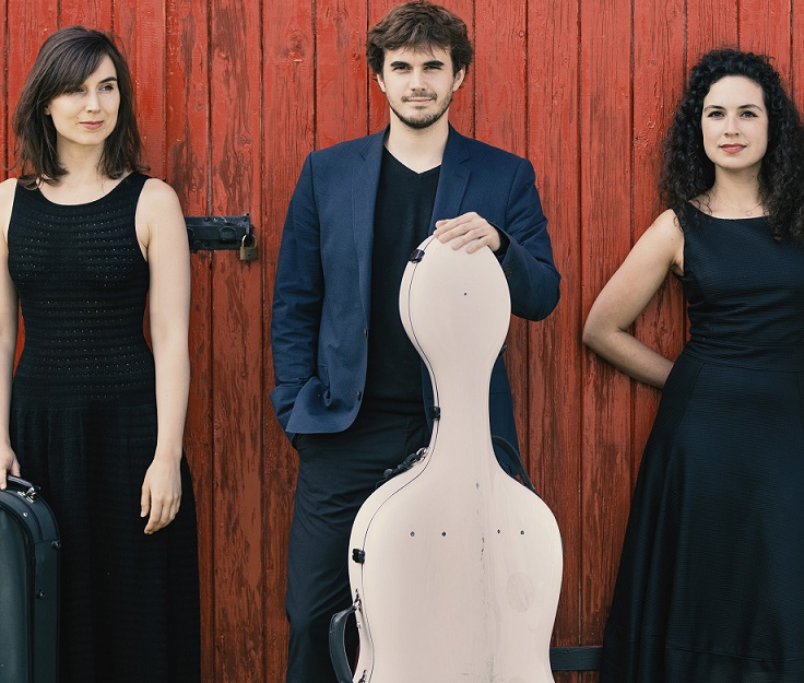 Trio Karenine Franck Krawczyk